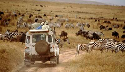 Trips to Africa