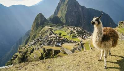 Trips to South America